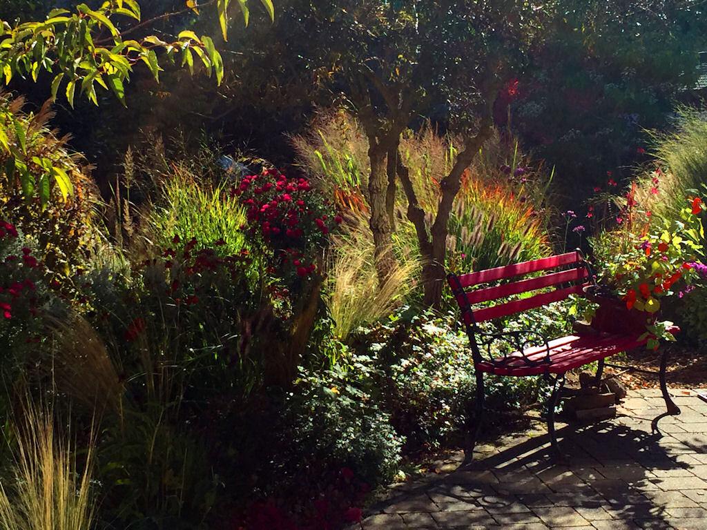 Offene Garten Staudenfreunde