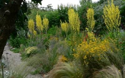 Garten Waltzer