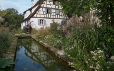 Garten Haas