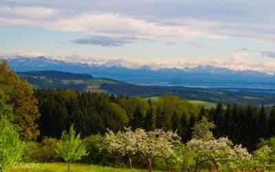 Blick auf Berge und See