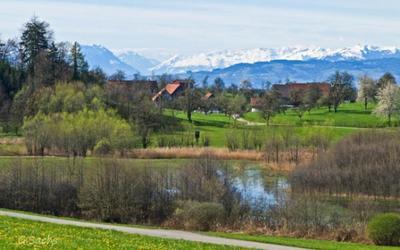 Im Hinterland des Bodensees