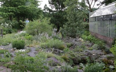 Steingarten im Hessenhof