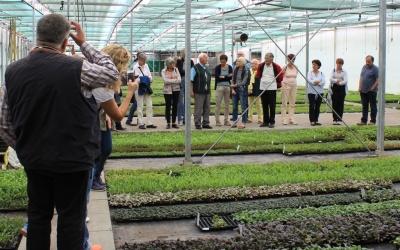 Jungpflanzen im All-Wetterhaus    Foto © 2016 Angelika Pickel
